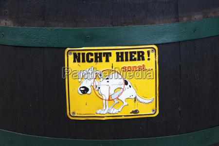 haustiere austria europa horizontal hund hunde