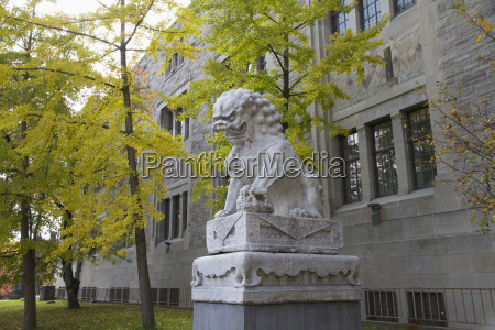 chinese lion in front of the