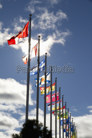 canadian flags by the canadian war