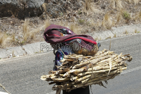 tzotzil maya woman carrying a load