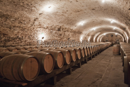 french oak barrels in the historic