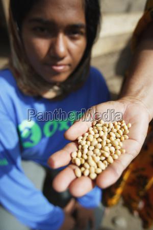 oxfam mitarbeiter verteilen soya bean seeds