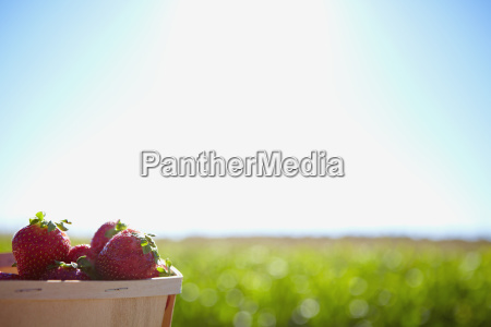 a basket full of strawberries with