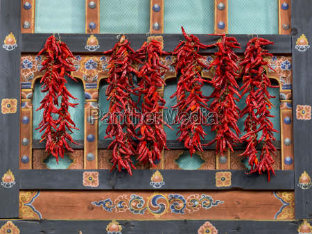 red peppers hanging on an ornate