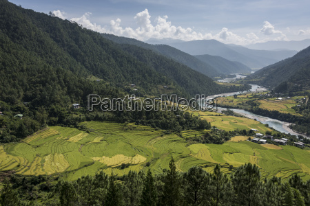 river flowing through a valley with