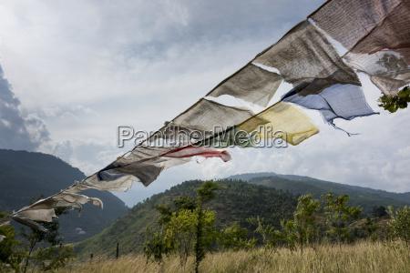 prayer flags punakha bhutan