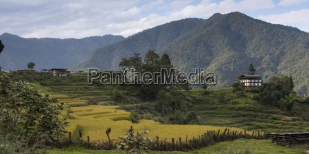 rural landscape in a valley thimphu