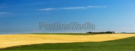 blau landwirtschaftlich farbe baum horizont landwirtschaft
