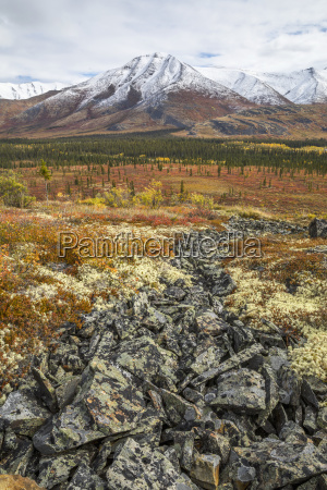the landscape along the dempster highway