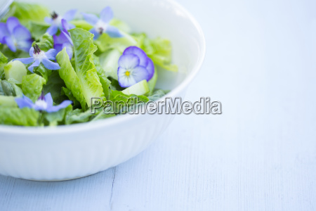 a gourmet green salad with blue