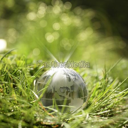 glaskugel auf gruenem gras
