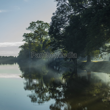 tranquil water reflects trees along the