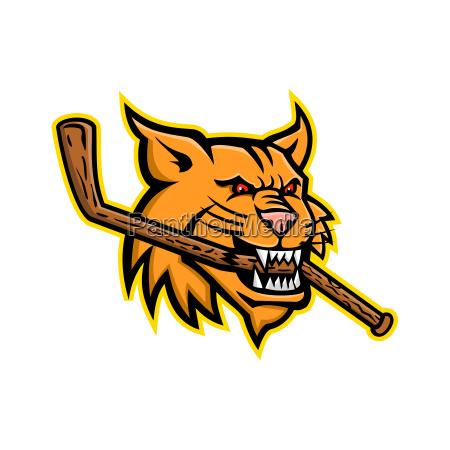 bobcat eishockey maskottchen