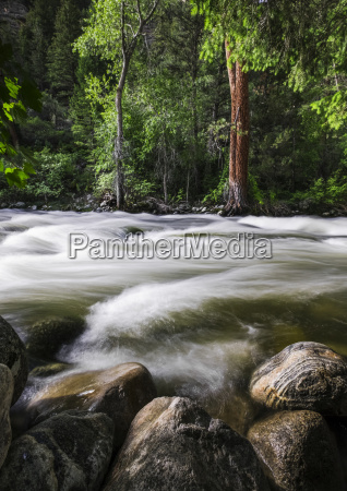 surface view of wet rocks and