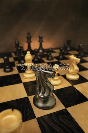 strategie tafel makro grossaufnahme macro makroaufnahme