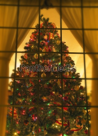 looking at indoor christmas tree through