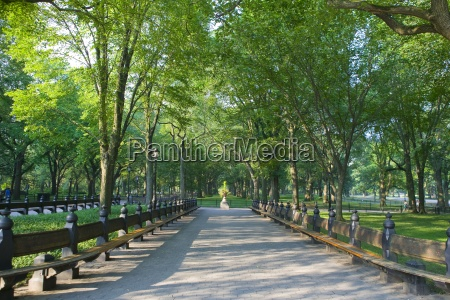 a path in central park new