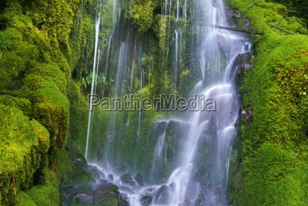 waterfall over moss covered rocks