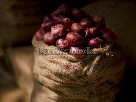 sack of onions kerala india