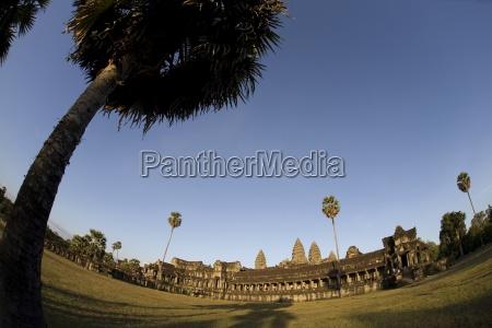palm trees angkor wat temple angkor