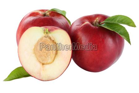 nectarine nectarines fruit fruit fruit fruit