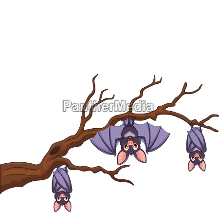 happy cartoon bat hanging on tree