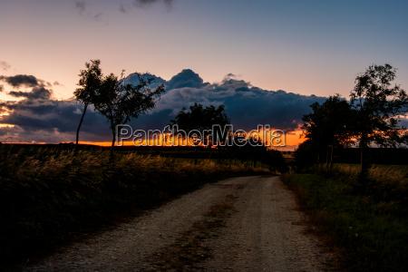 weg im sonnenuntergang landschaft im harz