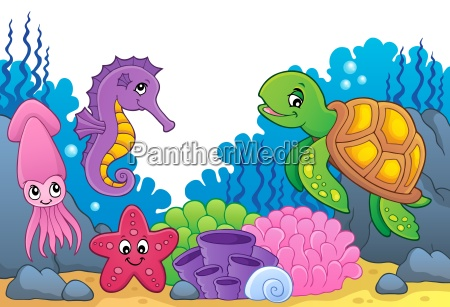 sea life theme image 5