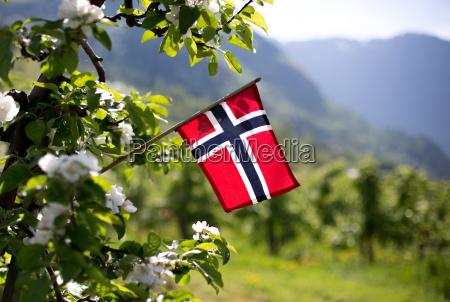 reisen durch norwegen