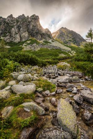 berglandschaft mit einem bach