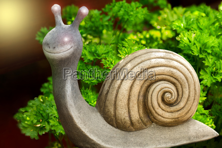a snail stands in front of