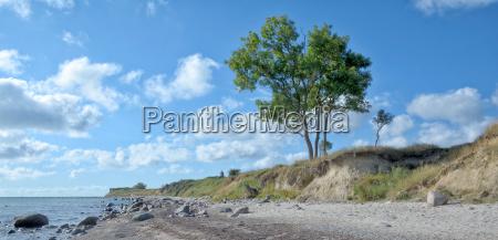 kuestenlandschaft bei staberhuk auf fehmarn baltikum