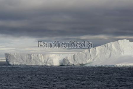 huge tabular iceberg floating in bransfield