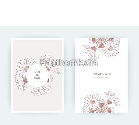 kartenblumen calendula chrysanthemum kamille daisy aster