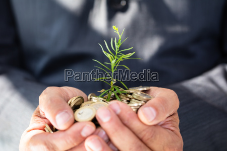 businessman holding plant and golden coins