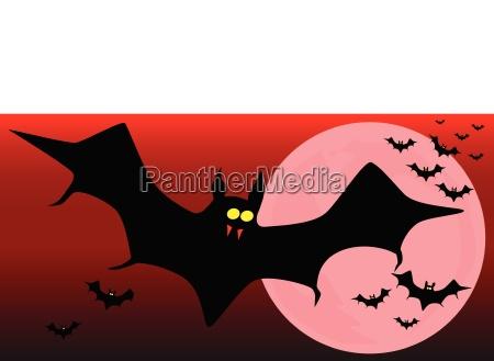fliegender vampir fledermaeuse
