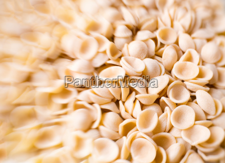 raw uncooked italian orecchiette pasta blur