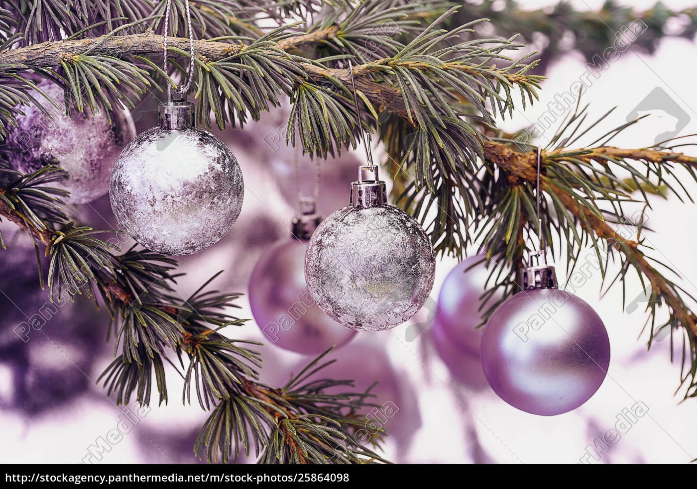 rosa, weihnachtskugeln - 25864098