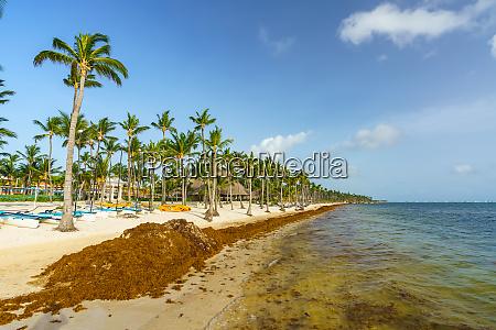 punta cana dominikanische republik 25