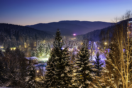 silvester im winterwald