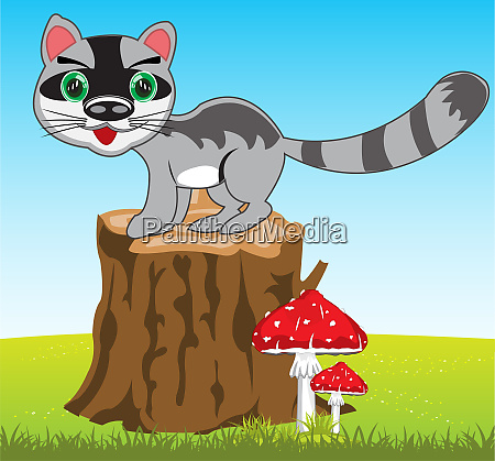 karikatur des wildtier racoons ueber die