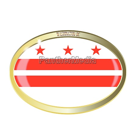 washington dc flag oval button