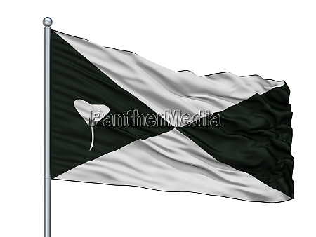 lokeren city flag on flagpole belgium