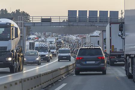 dense highway scenery