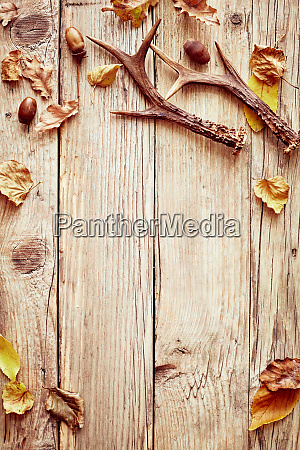 rustic autumn border with leaves and