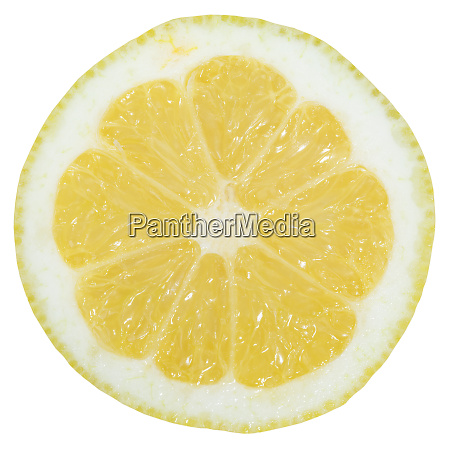 lemon slice fruit sliced isolated on