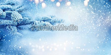 tannenzweige im blauen kalten schneewinter