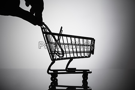 person holding shopping cart