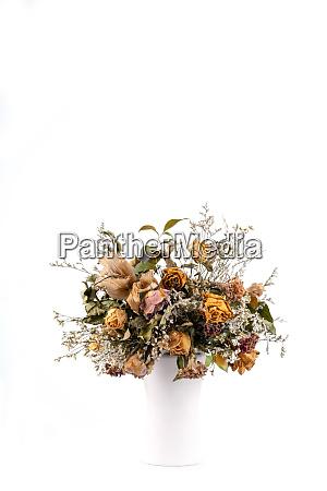 trockenblueten in weisser vase