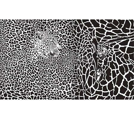 hintergrund mit leopard und giraffe